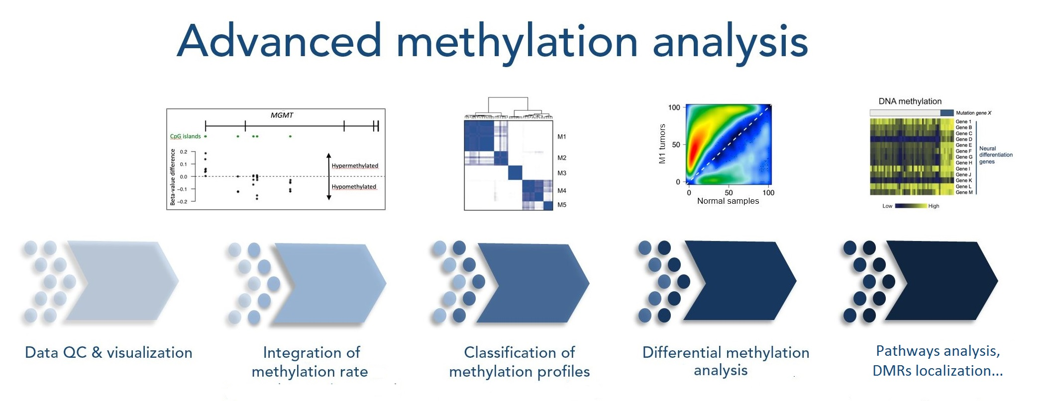 Advanced methylation analysis 3